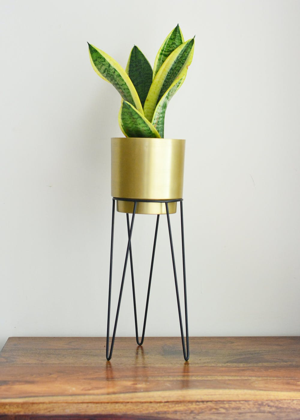 Athena Planter with Stand